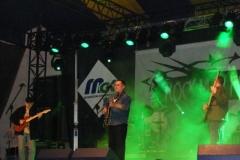 marjanski-rmf-2008-0233-z